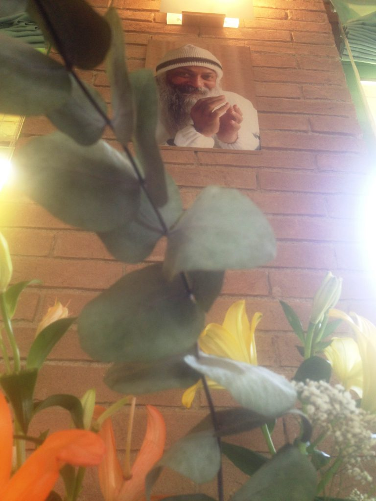 flowers + Osho